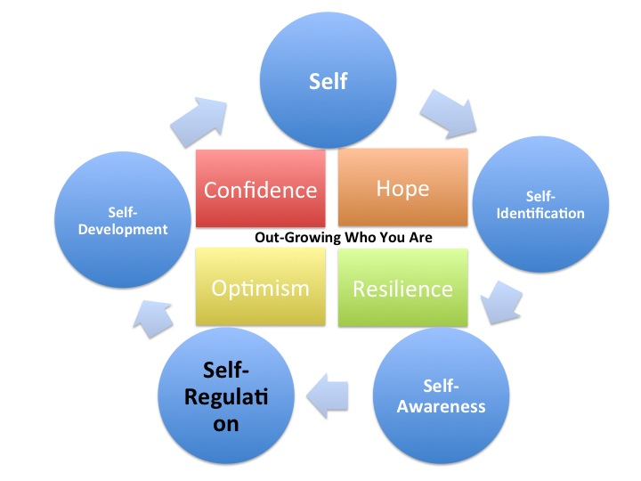 focus on self regulation