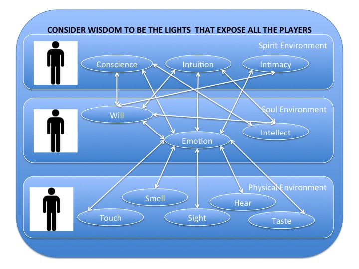 Your Wisdom Lighted 11 Players